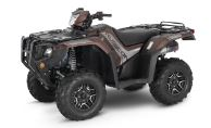 Honda FOURTRAX FOREMAN RUBICON 4X4 AUTOMATIC DCT EPS DELUXE